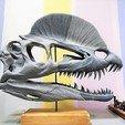 Download STL files Dilophosaurus Skull, atheiste29