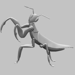 5.png Télécharger fichier STL Mantis, mante insecte relief 3D • Design imprimable en 3D, nounousky