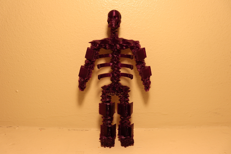 IMG_2766.JPG Télécharger fichier STL gratuit Squelette de la Faucheuse • Plan à imprimer en 3D, cloudyconnex