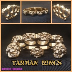 wwww.jpg Download free STL file TARMAN RINGS • 3D print template, LittleTup