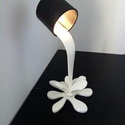 IMG_20201121_130807.jpg Download STL file SPLASH Lamp • 3D print design, rom1pelletier
