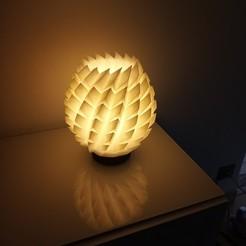IMG_20200321_103052.jpg Download STL file Design flower lamp • 3D printing design, rom1pelletier