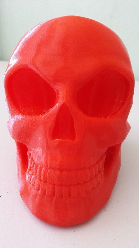 skull2_display_large.jpg Télécharger fichier STL gratuit Crâne • Objet pour imprimante 3D, Dourgurd
