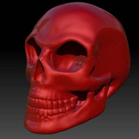 Skull4_display_large.jpg Télécharger fichier STL gratuit Crâne • Objet pour imprimante 3D, Dourgurd