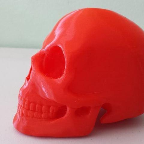 skull3_display_large.jpg Télécharger fichier STL gratuit Crâne • Objet pour imprimante 3D, Dourgurd