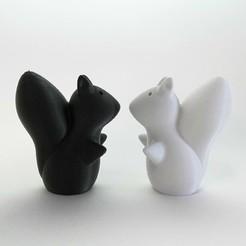 Descargar Modelos 3D para imprimir gratis Sal de ardilla y pimentero, Formatize
