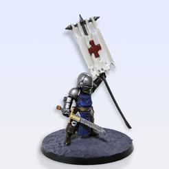 Download 3D printing templates Crusader Darkest dungeon mini v2, TwelveFoxtrot