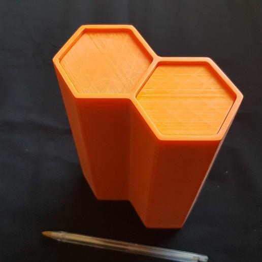 hive_005.jpg Télécharger fichier STL gratuit Hive • Objet pour impression 3D, seb2320