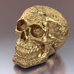 Télécharger objet 3D Crâne, hobachnam