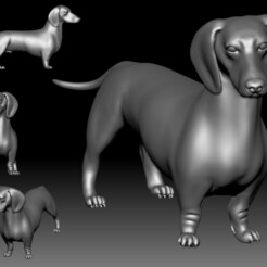 Dutch Hound 3D printable model.jpg Download STL file Dutch hound Dachshund 3D printable model • Design to 3D print, voronzov