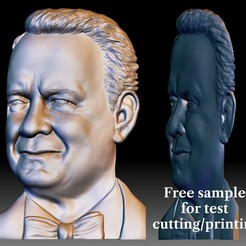 Tom Hanks 3D portrait STL file for CNC router.jpg Download free STL file 3D portrait - Custom bas-relief for CNC router by your photo • 3D printable object, voronzov