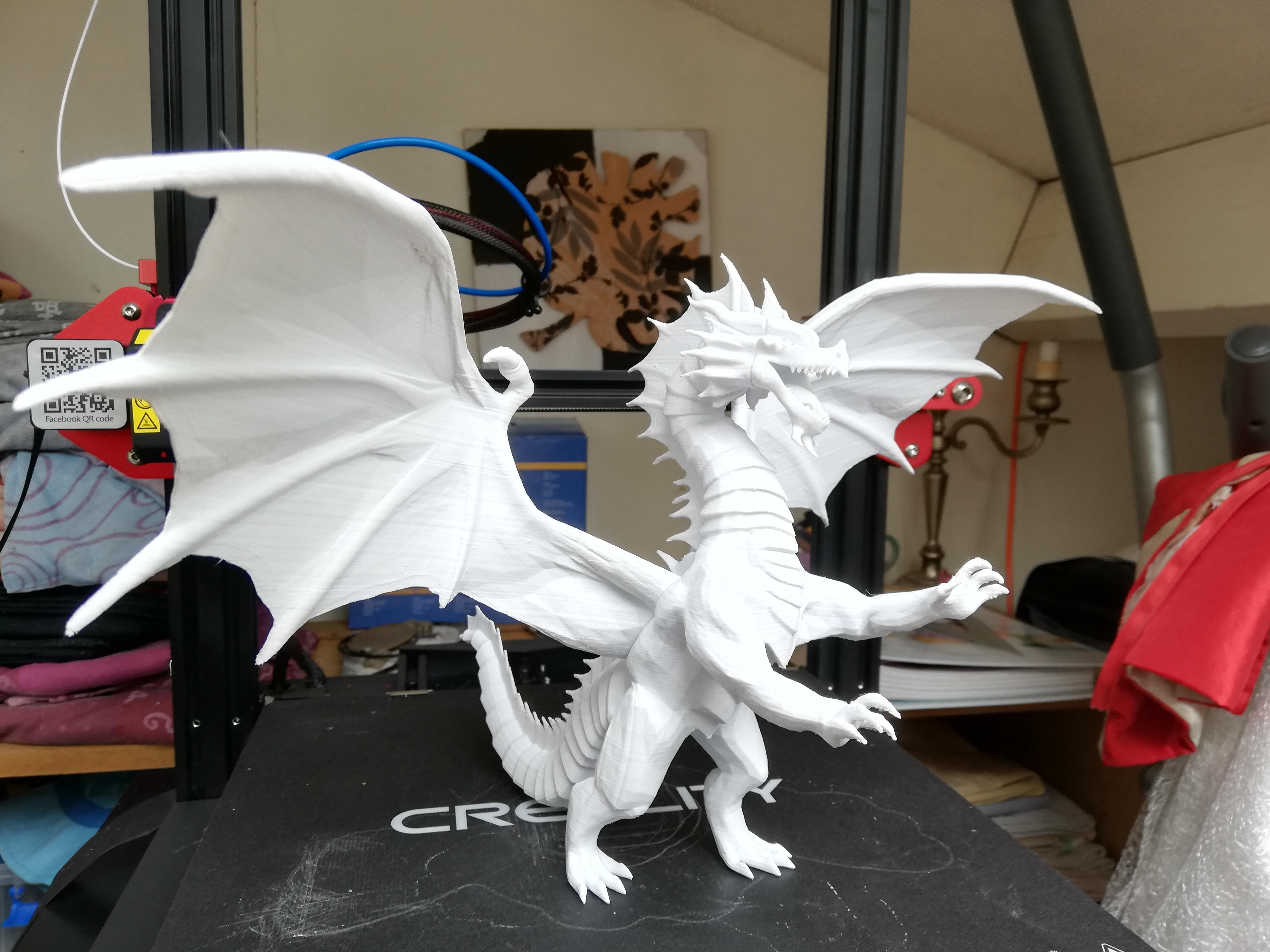 IMG_20190407_121041.jpg Télécharger fichier STL gratuit Dragon • Plan à imprimer en 3D, JEJE817