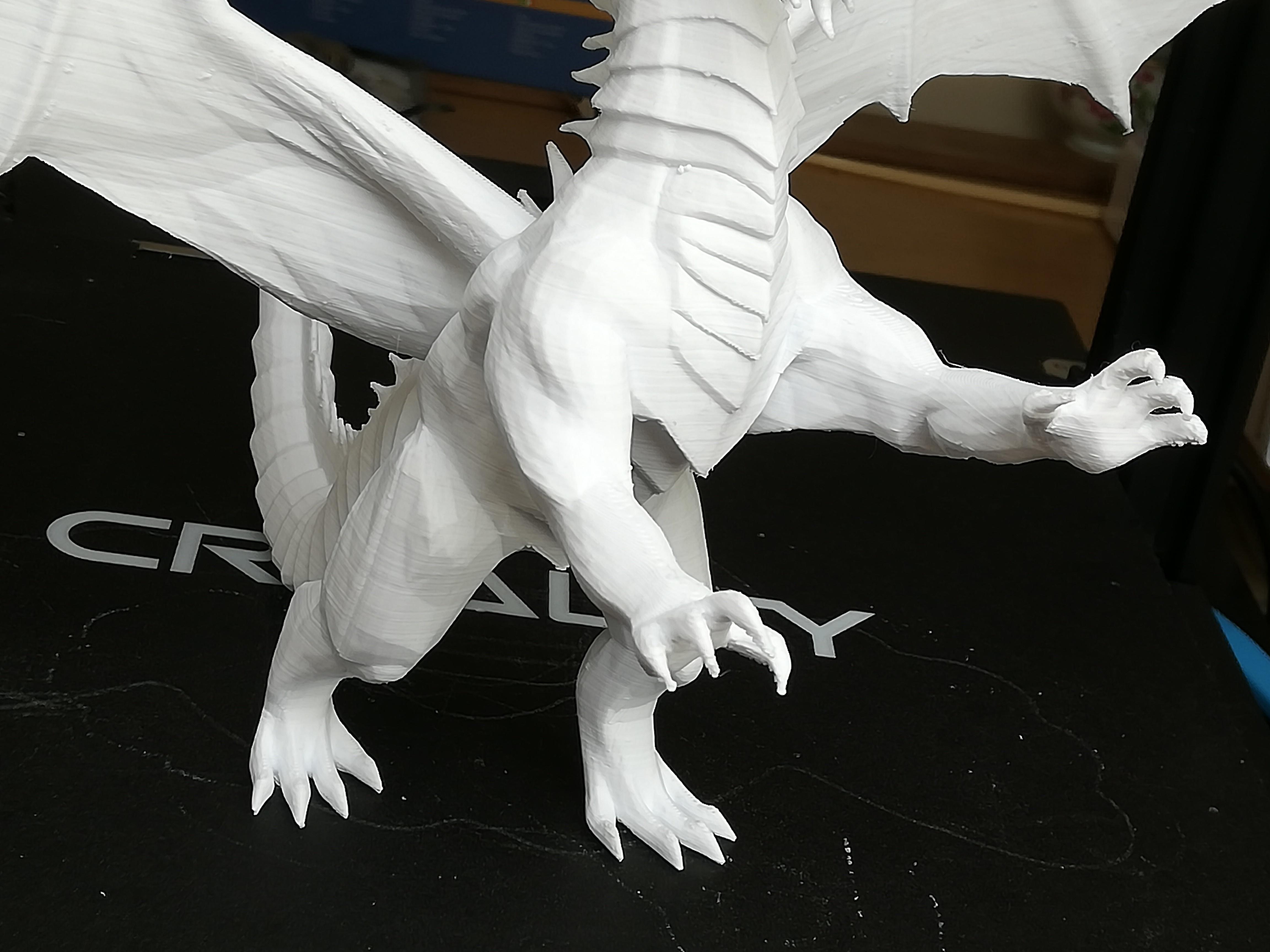 IMG_20190407_121128.jpg Télécharger fichier STL gratuit Dragon • Plan à imprimer en 3D, JEJE817
