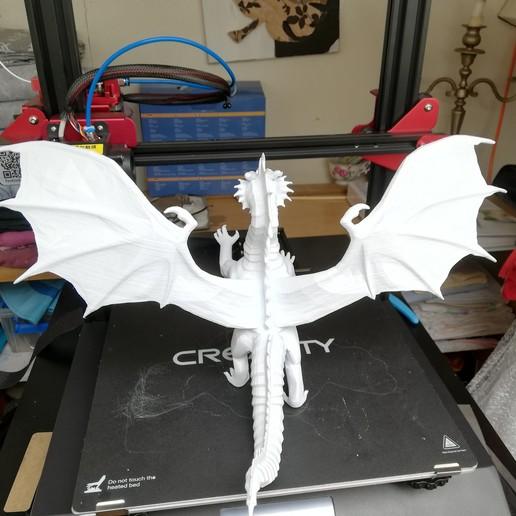 IMG_20190407_121105.jpg Télécharger fichier STL gratuit Dragon • Plan à imprimer en 3D, JEJE817