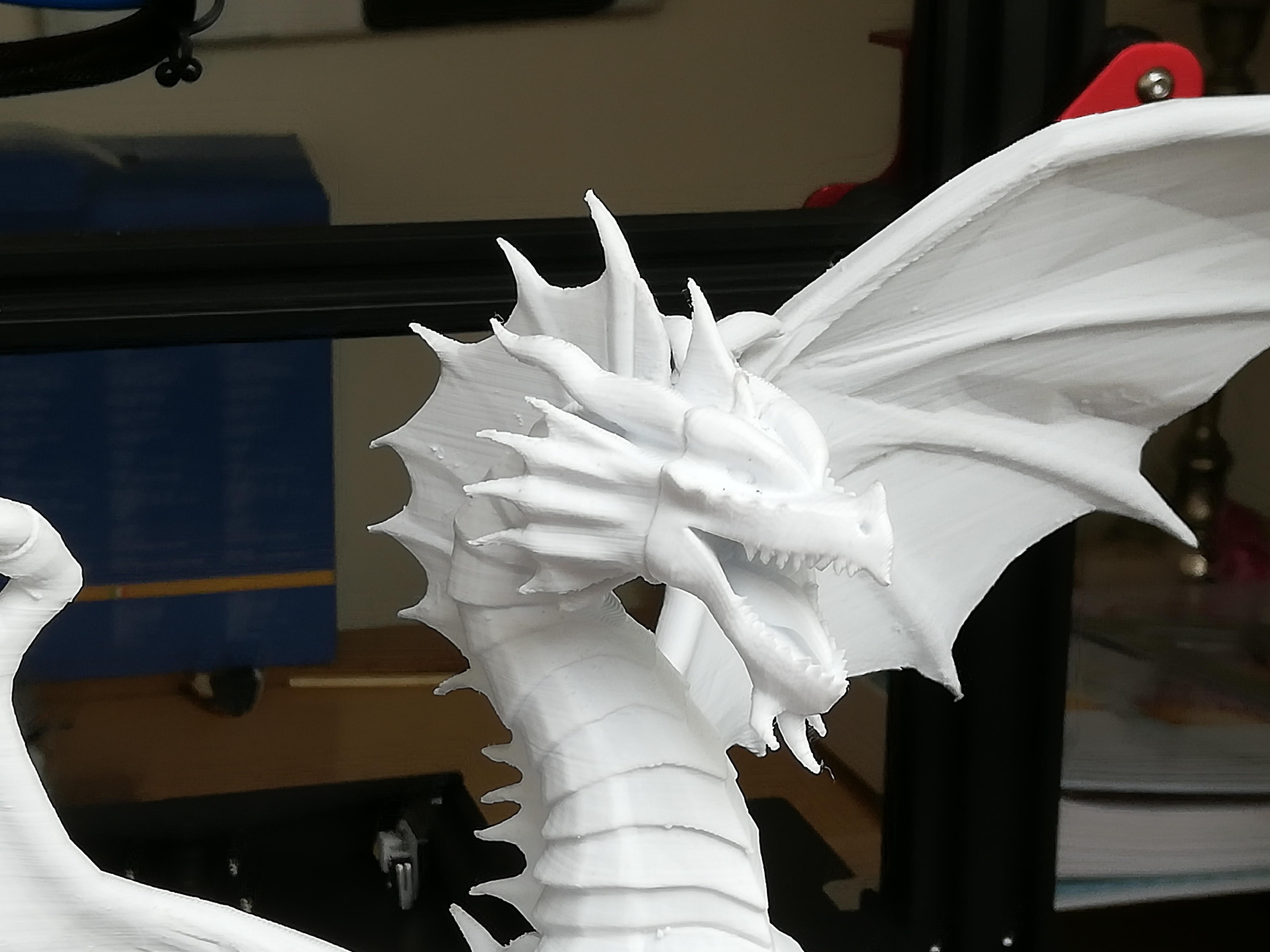 IMG_20190407_121119.jpg Télécharger fichier STL gratuit Dragon • Plan à imprimer en 3D, JEJE817