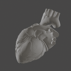 heart.png Download STL file Human heart low poly • 3D printable model, manukrafter