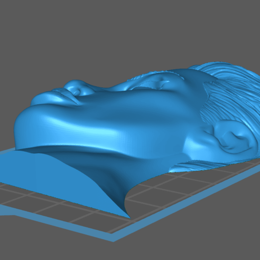 Screen Shot 2020-05-03 at 11.24.34 PM.png Download free STL file Angelina Jolie Tomb Raider Actress • 3D printing template, Hogheads3dPrinting