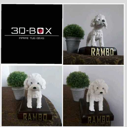 rambo3.jpeg Download STL file I AM 3D-BOX : TEDDY, RAMBO,VIGO • Template to 3D print, johnnyandresparrales