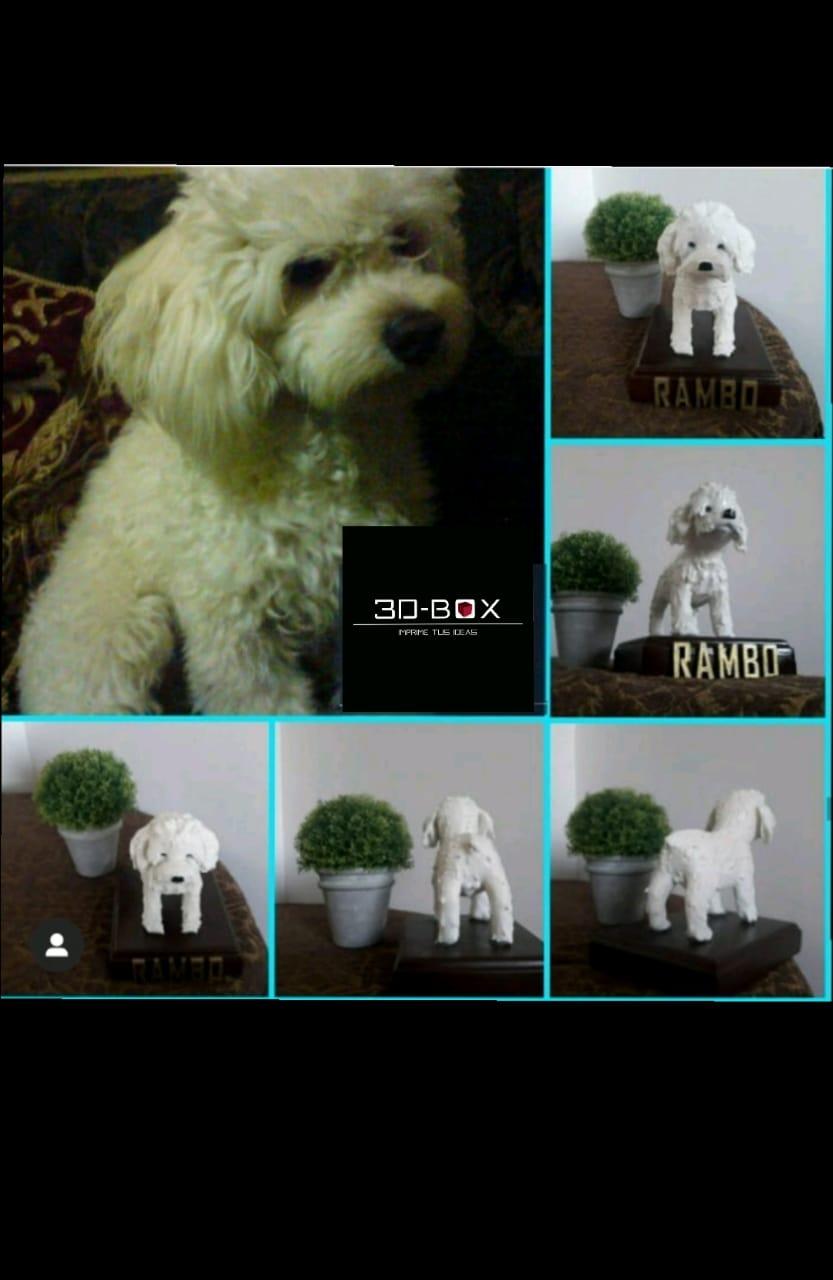 rambo1.jpeg Download STL file I AM 3D-BOX : TEDDY, RAMBO,VIGO • Template to 3D print, johnnyandresparrales