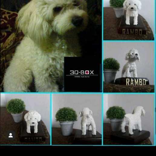 Download free 3D model I AM 3D-BOX : TEDDY, RAMBO,VIGO, johnnyandresparrales