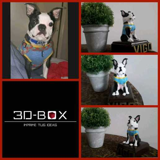 vigo.jpeg Download STL file I AM 3D-BOX : TEDDY, RAMBO,VIGO • Template to 3D print, johnnyandresparrales