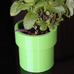 IMG_2336a.jpg Download STL file Pot de fleur supermario (flower pot mario pipe) • 3D print template, mickaelchabert