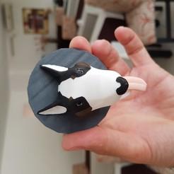 20191218_151428 (1).jpg Télécharger fichier 3MF bull terrier 3d magnet • Objet à imprimer en 3D, mistic-3d
