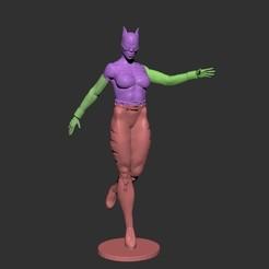 Descargar modelos 3D para imprimir mujer gato, dimka134
