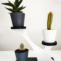 support cactus.jpg Télécharger fichier STL support plantes • Design pour impression 3D, nodoudou4yu
