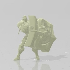 Download free STL file Braum LoL + Pore • 3D printer template, STLOL