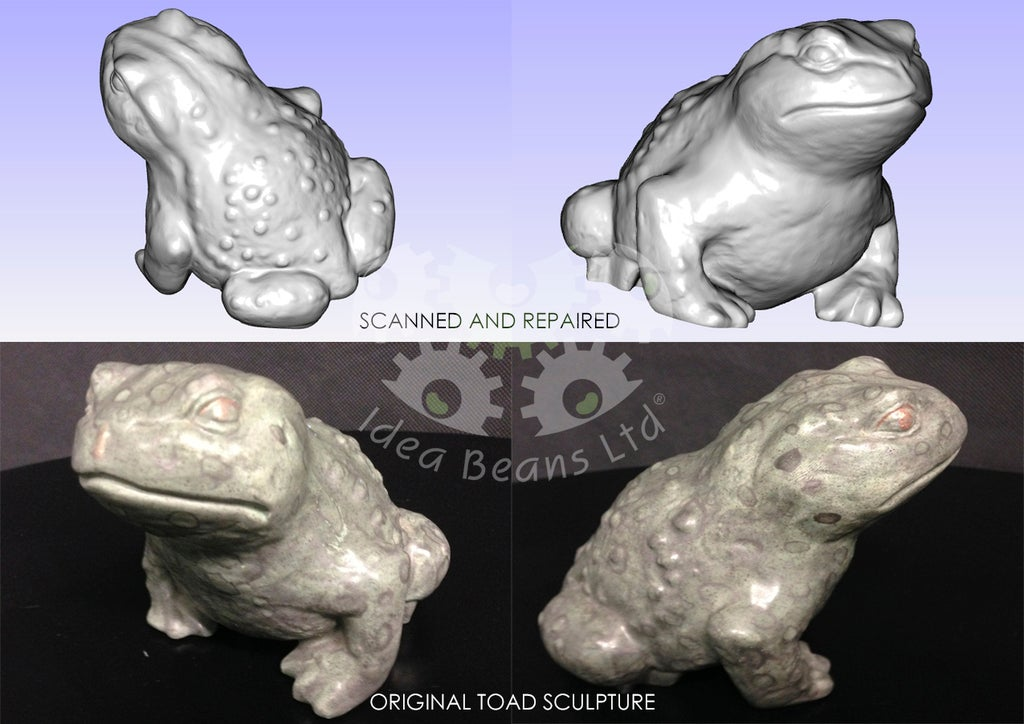 Download free 3D printing files 3D Scanned Toad (Gama) ・ Cults