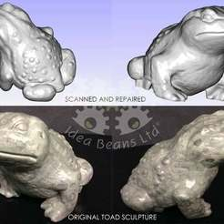 Download free 3D printing files 3D Scanned Toad (Gama), SimSimona