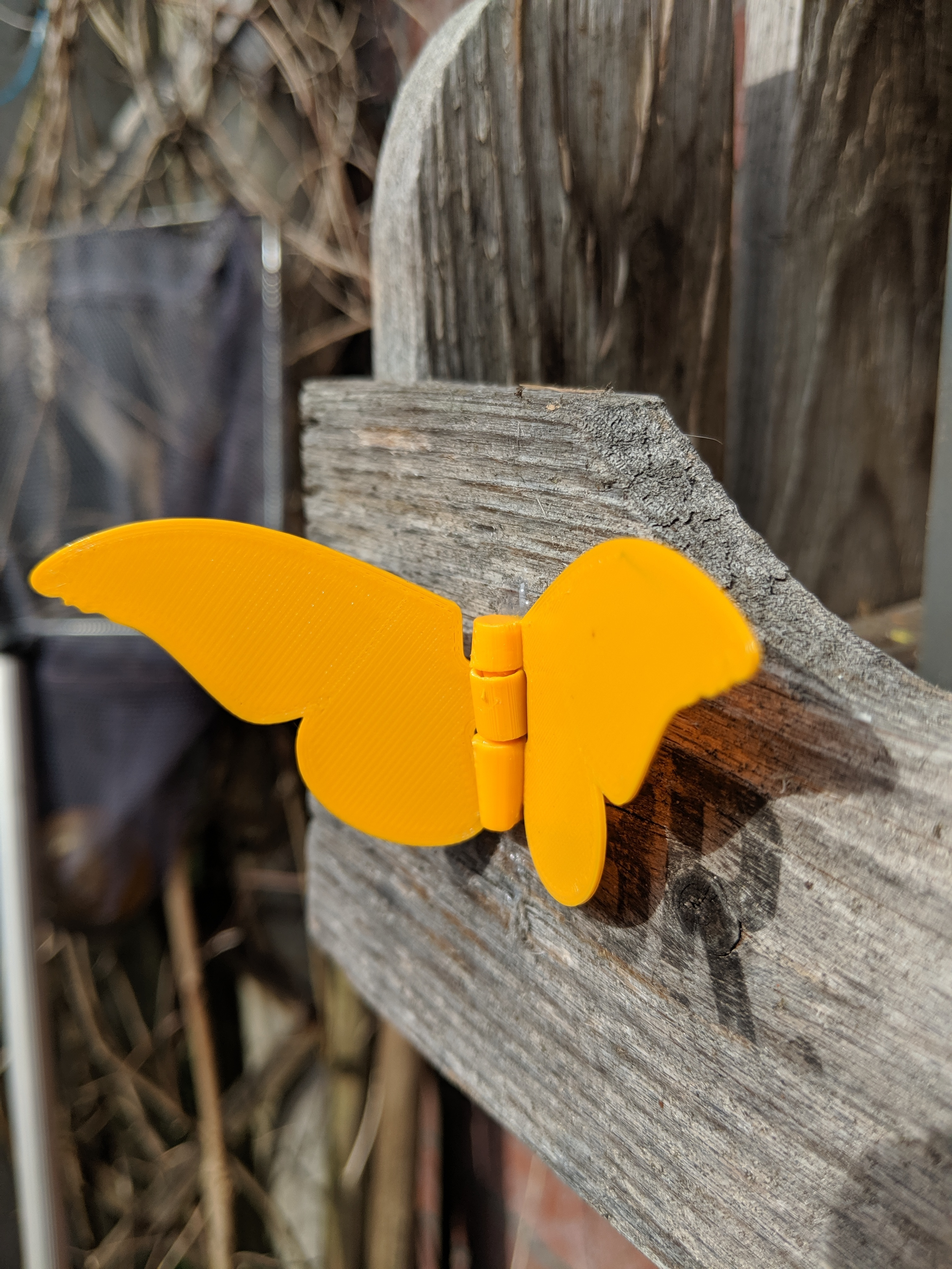 IMG_20190602_172622.jpg Download free STL file Butterfly with a living hinge - (Glue to a thing / wall) • 3D print template, Wilko