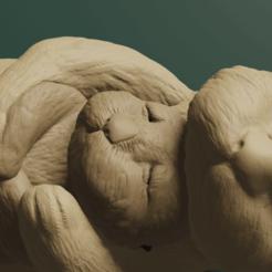 7Nutria.png Télécharger fichier STL Loutre • Plan à imprimer en 3D, Aslan3d