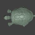 Descargar diseños 3D Tortuga Tigre, Aslan3d
