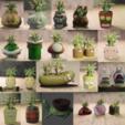 Télécharger fichier 3D 20 pots de fleurs, Aslan3d