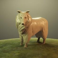Lrender1.jpg Download STL file DOG COLLIE (LASSIE) • 3D printing template, Aslan3d