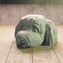 4 dog cabeza.jpg Download STL file dog's head • 3D printing model, Aslan3d