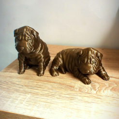 Download 3D printing templates shar pei, Aslan3d