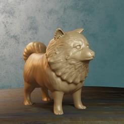3 dogchico.jpg Télécharger fichier STL Chien poilu • Modèle pour impression 3D, Aslan3d