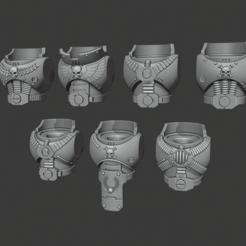 Download free 3D printer files Firstborn Torsos - Heavy Weapons Squad, Cornivius