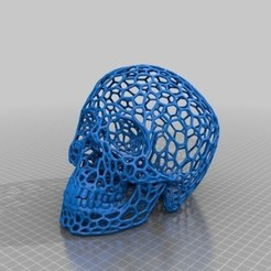 Download free 3D printing templates Skull_-_Voronoi_effect, gharadze