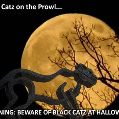 halloween_display_large.jpg Télécharger fichier STL gratuit Wild Catz.... avec des mâchoires qui mordent et grognent ! • Plan imprimable en 3D, Muzz64