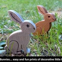 Download free 3D printing templates Easter Bunnies, Muzz64