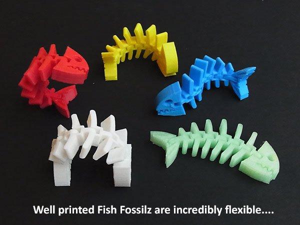 b23479584df2fbc7594b62a67f472bde_display_large.jpg Download free STL file Fish Fossilz • 3D printing template, Muzz64