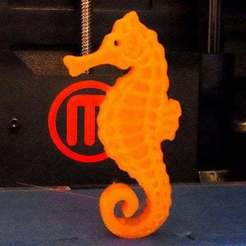 Download free STL files Seahorse - Balanced so it stands on its tail!, Muzz64