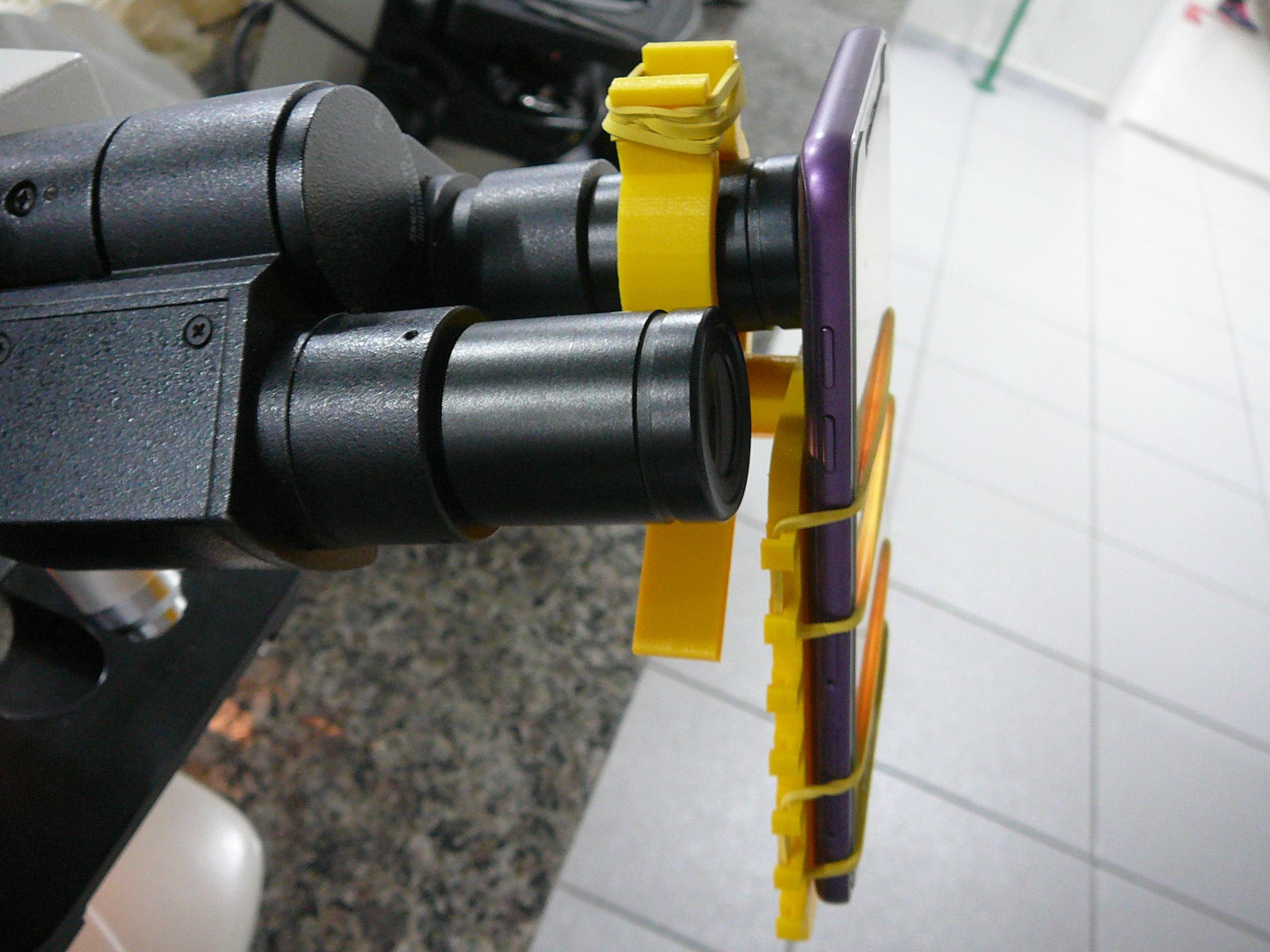 P1080941.JPG Download free STL file Microscope cell support - Suporte de celular para microscópio • 3D printer template, fabiomingori
