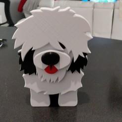 IMG_20200402_115421.jpg Download STL file Old English Sheepdog (boy) Desk Utility • Template to 3D print, lockey