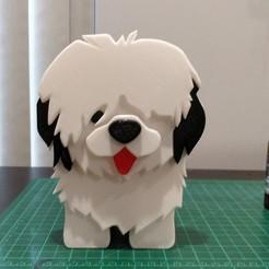 IMG_20200403_152712.jpg Download STL file Old English Sheepdog (Girl) Desk Utility • 3D printing model, lockey