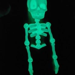 Download STL file Cute Flexi Print-in-Place Skeleton • 3D printable template, Bigballs79